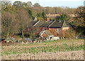 TG1804 : Cottages in Cantley Lane viewed across stubble by Evelyn Simak