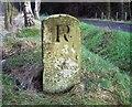 NU0603 : Boundary Stone 'R' by David Clark