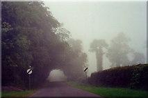 N1336 : Castledaly Manor - R444 on a foggy morning by Joseph Mischyshyn