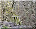 SJ9790 : Bird Table in Ernocroft Wood by Gerald England