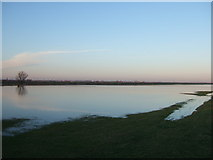 TL4279 : Flooded - The Ouse Washes at Sutton Gault by Richard Humphrey