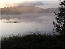 N9612 : Mist on Blessington Lake by IrishFlyFisher