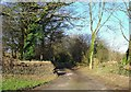 SN1343 : Track to Hafod Grove, Moylgrove by Dylan Moore