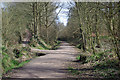 TQ3337 : Path junction, Worth Way by Robin Webster