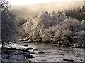 NC4406 : River Cassley by sylvia duckworth