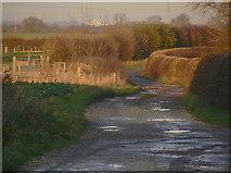 SK7645 : Baxter Lane by Alan Murray-Rust