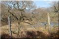 SH6742 : Maentwrog - Inside the Dduallt Spiral by Ken Bagnall