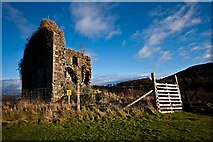 NR8668 : Tarbert Castle by Steve Partridge
