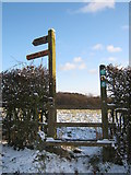 SO9875 : Stile & Fingerpost, Brown's Way, Beacon Lane by Roy Hughes