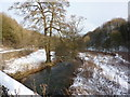 SK2364 : Looking down the River Lathkill by Peter Barr