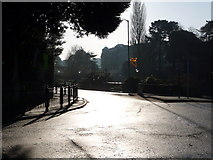 SZ0891 : Bournemouth: the sun shines up Bourne Avenue by Chris Downer
