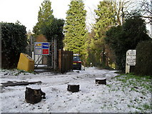 SU9948 : Lingering snow in Ferry Lane by Basher Eyre