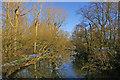 TQ2149 : River Mole at Betchworth by Ian Capper