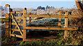 J3470 : Gate, Lagan Meadows, Belfast by Albert Bridge