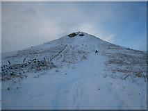 NZ5812 : Roseberry Topping from Roseberry Common by Philip Barker