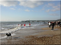 SZ1191 : Boscombe, taking the plunge by Mike Faherty