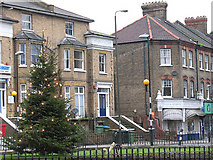 TQ4077 : Christmas tree at the Royal Standard by Stephen Craven
