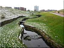 NZ3573 : Small stream between The Links and Whitley Sands Promenade by Andrew Curtis