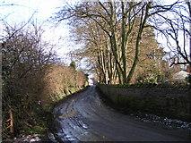 SO4841 : Huntington Lane heading east by Rob Purvis
