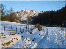 NY3404 : Track to Loughrigg tarn by Michael Graham