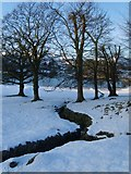 NY3404 : Loughrigg Tarn Feeder by Michael Graham