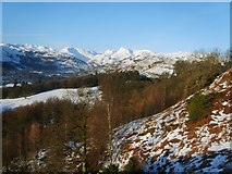 NY3404 : Ascending Loughrigg by Michael Graham