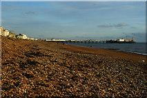 TQ3003 : Brighton Beach by Peter Trimming
