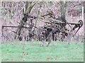 SU3788 : Relic in the hedge by Bill Nicholls