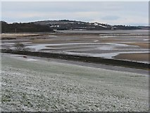 NT1977 : Drum Sands and Cramond Island Causeway by M J Richardson