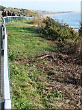 SZ1191 : Boscombe: view east along the Overcliff by Chris Downer