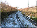 TM1496 : Frosty track west of Church Lane by Evelyn Simak