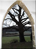 SU8518 : Silhouetted tree as seen from the porch at St Mary, Bepton by Basher Eyre