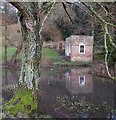 ST7893 : Summerhouse and carp pond, Newark Park by Derek Harper