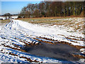 TM3696 : Frozen puddle on snowy track by Evelyn Simak