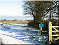 TM3795 : Entrance to Hales Green Common from Litchmere Road by Evelyn Simak