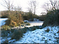 TM3795 : Frozen pond on Hales Green Common by Evelyn Simak