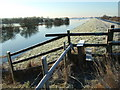 TL4381 : Frosty - The Ouse Washes at Mepal by Richard Humphrey