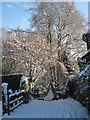 SO9773 : Snowy Entrance to Round Hill Allotments. by Roy Hughes