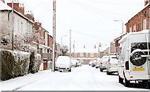 J3673 : Clarendon Avenue, Belfast by Albert Bridge