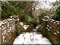 SZ0891 : Bournemouth: steps to Braidley Road on footpath B08 by Chris Downer