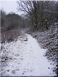 SO9194 : Snowy path in Coppice by Gordon Griffiths