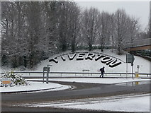 SS9612 : Tiverton : Tiverton Flora & Heathcoat Way Roundabout by Lewis Clarke