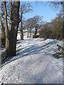 SU4409 : Solent Way Footpath Approaching Weston Shore Car Park by dinglefoot