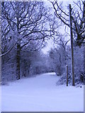 TM3667 : Footpath to Kelsale Hall & Rendham Road by Adrian Cable