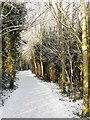 TQ2606 : Footpath and Cycleway, Benfield Valley by Simon Carey