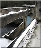 NN9357 : Pitlochry Dam by Jackie Proven