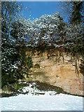 SE2768 : Snowy trees on Echo Cliff by Matthew Hatton