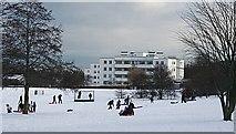NT2273 : Ravelston Garden by Anne Burgess