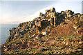 SW3523 : Lower Bosistow Cliff by Bob Jones