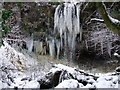 NS3074 : Frozen waterfall in Devol Glen by Thomas Nugent